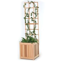 All Things Cedar PL20U-T 18-in W x 60-in H Unfinished Garden Trellis with Planter