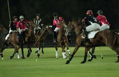 11/7/14 alfajr-news.net Abu Dhabi Commercial Bank Championship Launches Pink Polo Sports Club Polo season | Emirati daily newspaper Dawn - politically - independent