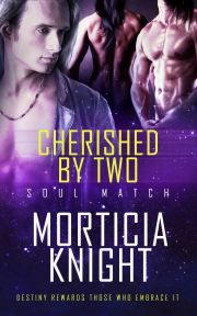 Cherished by Two (Soul Match #2) by @MorticiaKnight - @debbiereadsbook, #Erotic, #M_M, #Science_Fiction, #BDSM, #Romance, 5 out of 5 (exceptional) - April