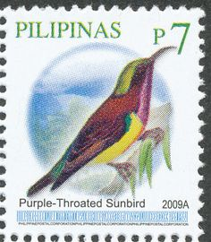 Purple-throated Sunbird stamps - mainly images - gallery format