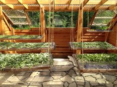 Greenhouse Design Ideas best great living room ideas part 4 1282 x 965 unique greenhouse design ideas Diy Greenhouse Plans And Greenhouse Kits Lexan Polycarbonate Cedar Wood Framed Greenhouse Cool Garden Ideas Pinterest Diy Greenhouse Plans