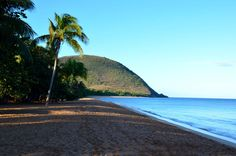 Wir waren auf Guadeloupe und haben zu 6. die Insel erkundet! Wie es war erfährst du hier! Beach, Water, Outdoor, Caribbean, Explore, Landscape, Vacation, Travel, Islands