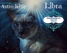 Kitty Horoscope: October Belongs to the Lovely Libra Cat   Catster