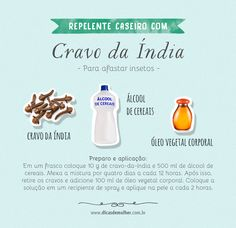 Repelentes caseiros: 5 receitas naturais e poderosas Weekly Cleaning, Cleaning Hacks, Diy Beauty Care, E 500, Flylady, Home Health, Home Hacks, Keep It Cleaner, Diy Crafts To Sell