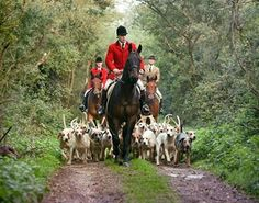 Reminds me of our hunt many years ago with the hounds following the horses.