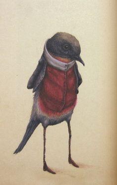 little gentleman bird!