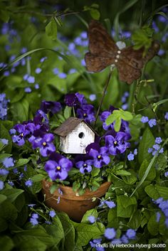 Cute flower garden idea. Put a tiny bird house among your flowers... Love how it looks with these dainty purple blossoms.