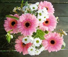 Bunch Of Flowers, Pink And White Flowers Pink And White Flowers, Bunch Of Flowers, Pink Nature, Daily Challenges, Nature Images, Flourish, Flower Power, Floral Arrangements, Elegant