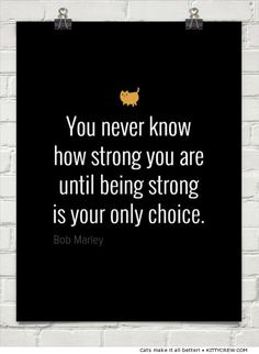 Motivational Cat - Bob Marley Quote (more @ Kittycrew.com)