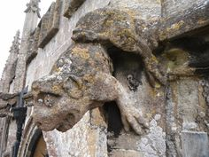 Heraldic toad for Botreaux, Hunky Punk, St Peter and St Paul, Kilmersdon, Somerset