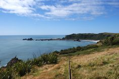 Tauranga Bay South Island, Flora And Fauna, West Coast, New Zealand, Places Ive Been, Cape, River, Mountains, World