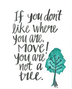 If you don't like where you are move,you are not a tree.