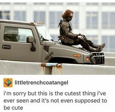 Stop being so cute, Bucky                                                                                                                                                                                 More