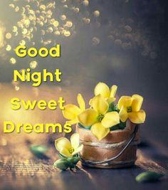Good Night Wishes, Good Night Sweet Dreams, Good Night Quotes, Good Night Image, Good Morning Good Night, Day For Night, Goeie Nag, Nighty Night, Friendship