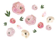 Pink Blooms Wall Stickers – Rocky Mountain Decals.