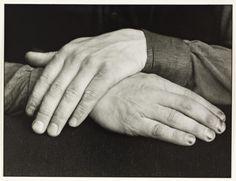 August Sander 'Studien - Der Mensch [Hands of a Photographer (Gunther Sander)]', 1944, printed 1990 © Die Photographische Sammlung/SK Stiftung Kultur - August Sander Archiv, Cologne; DACS, London, 2015.