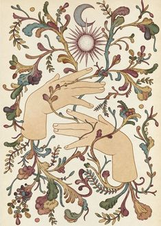 Illustrations by Katie Scott