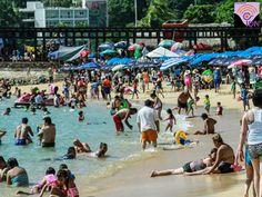 Violencia y siete homicidios se han registrado en menos de 12 horas en Acapulco, Guerrero.Tres hombres fueron atacados a balazos en la playa La Angosta, el saldo fue de dos muertos y un herido.   Después se registró otro ataque por la madrugada en un bar ubicado en la colonia La Cima, hombres armados ingresaron al establecimiento y abrieron fuego contra los asistentes, cinco personas murieron y dos más resultaron heridas.