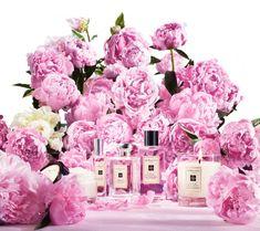 imagenes de perfumes - Buscar con Google