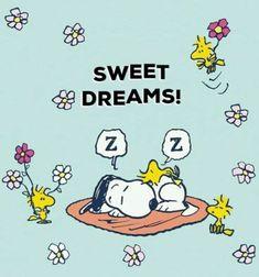Cute Good Night Quotes, Good Night Gif, Good Night Messages, Good Night Image, Good Night Friends, Good Night Wishes, Good Night Sweet Dreams, Goodnight And Sweet Dreams, Hug Quotes