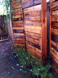My husband built this privacy fence between our neighbors and us. He hated looking right into their house from our kitchen sink. It's made out of pallet boards! Love it:)