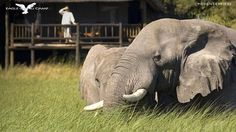 10 best romantic honeymoon places in africa south africa for Wild rivers motor lodge