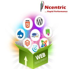 N-centric technologies India Pvt. Ltd Company is a pioneer Web designing services in USA based in India. Having a best and eye catching websites leads your company or firm towards success. The main purpose of our web site design is to drag viewer to your side and make your customer. We have very qualified web designers.
