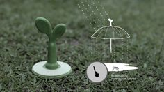 RAINSPROUT WEBE