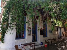 Provocolate: Falling in Love with Lesvos- One Perfect Day