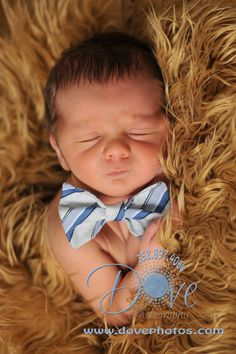 baby bowties    i cant wait to get wyatts pictures done with him in just a little bow tie
