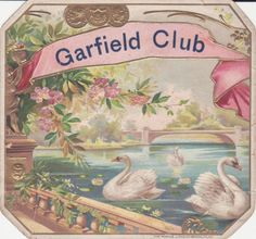 swan cigar box label...I only collect labels with ladies, but this is gorgeous!