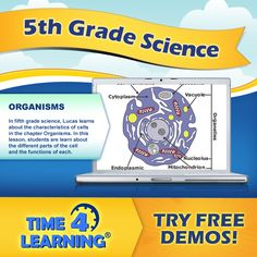 In fifth grade science, Lucas learns about the characteristics of cells in the chapter Organisms. In this lesson, students are learn about the different parts of the cell and the functions of each.