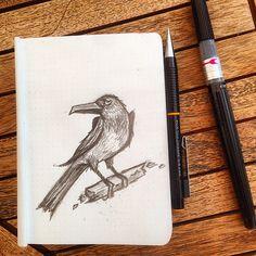 Ilustrations by AdolfoZee : Photo