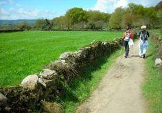 La naturaleza más bella del Camino de Santiago http://www.consumer.es/web/es/medio_ambiente/naturaleza/2013/07/08/217206.php