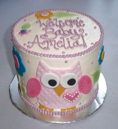 Happi Tree Nursery Bedding Baby Shower Chocolate Cake with Raspberry Buttercream, decorated with shimmery Fondant owl, flowers and leaves