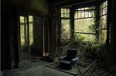 Abandoned home overcome by nature. A chair still sits where a family once stood.
