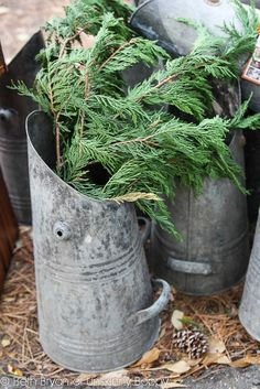 Love these coal scuttles with cypress greenery for Christmas at the Country Living Fair Atlanta 2012 @Country Living Magazine
