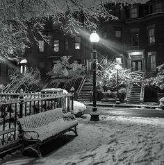 Snowy park bench | T