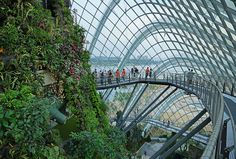 This ia a view of the walkway in the Cloud Forest, Gardens by the Bay, #Singapore.