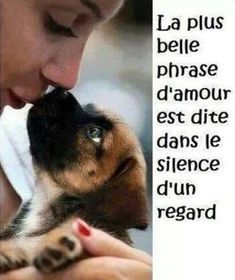 La plus belle phrase d'amour est dite dans le silence d'un regard. Animals And Pets, Cute Animals, Adoption, Amor Animal, Love Dogs, Four Legged, Animal Kingdom, Animals Beautiful, Decir No