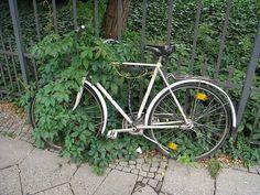 ¡Cuidado con la bici!