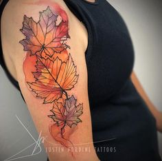 Fall leaves by Justin Nordine                                                                                                                                                                                 More