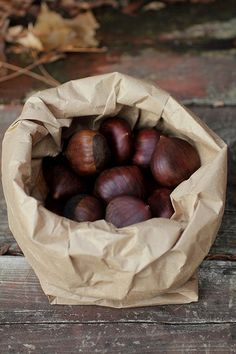 conkers with depth of autumnal colour