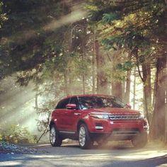 Range Rover Evoque www.landroversanjuantx.com
