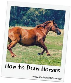 Step-by-step tutorial on how to draw horses Photo credit: Galloping Pony via photopin (license)