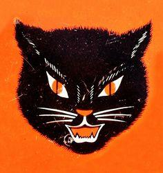 Love this Halloween kitty!