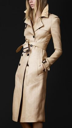 Wow, gorgeous trench coat. Look at the detail on the collar!