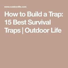 How to Build a Trap: 15 Best Survival Traps | Outdoor Life