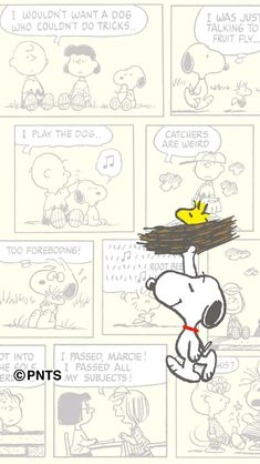 Snoopy Wallpaper, K Wallpaper, Colorful Wallpaper, Disney Wallpaper, Wallpaper Backgrounds, Snoopy Love, Charlie Brown And Snoopy, Snoopy And Woodstock, Cute Cartoon Wallpapers