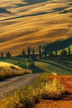 Amazing Tuscany countryside in Italy. Great for walking, hiking and just taking in the wonderful country air, cypress trees and undulating hills. Places To Travel, Places To See, Beautiful World, Beautiful Places, Image Nature, Under The Tuscan Sun, Voyage Europe, Tuscany Italy, Montenegro